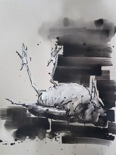 toter-vogel-1-web