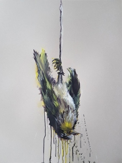 toter-vogel-7-web