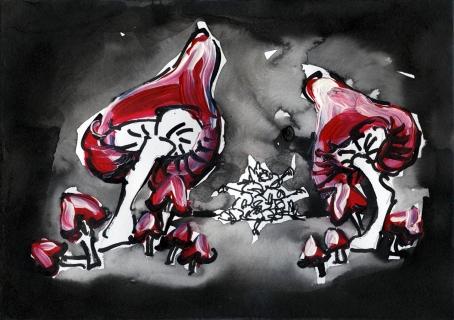 kroeten-pilze_14-web