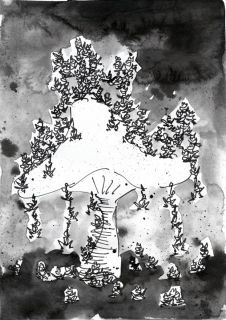 kroeten-und-pilze-01_p2014-web