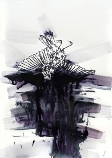 Toter-Vogel_02-web