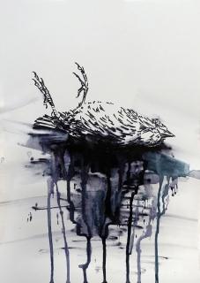 Toter-Vogel_18-web