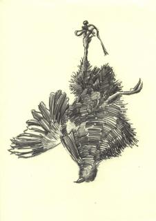 toter-vogel-zeichung-04-klein